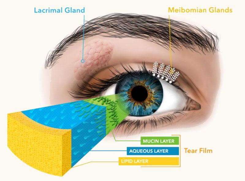 Oasis Eye Face and Skin, Ashland, OR